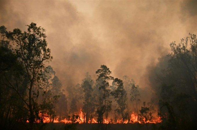 Incêndios cancelam o Rali da Austrália